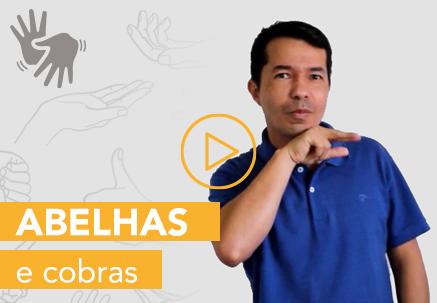 Abelhas e cobras — Pão Diário em Libras (28.07.2020)